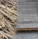 Faire des tiges du cotonnier ouest africain, un business rentable