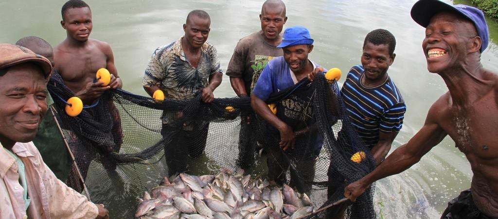 pisciculture (1)