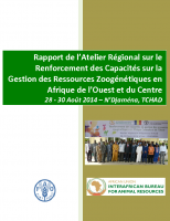REPORT S-RFP WC Africa Workshop_CHAD_French_Final 2