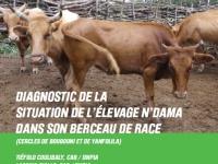 Diagnostic de la situation de l'élevage N'dama dans son berceau de race