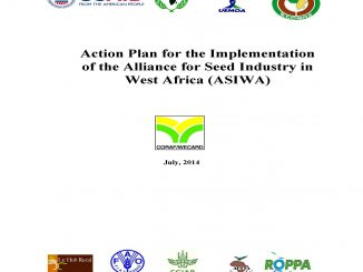action-plan-asiwa